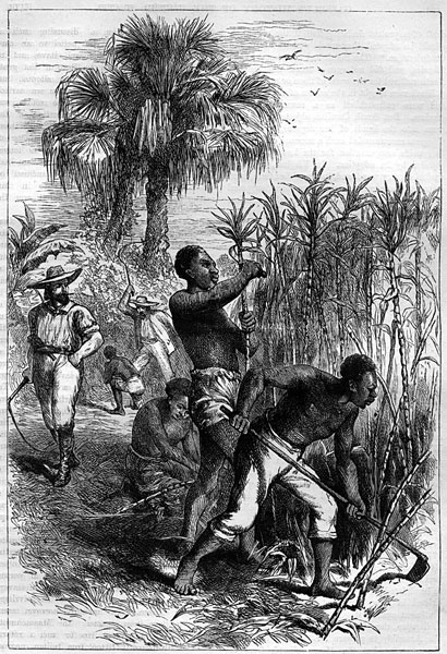 Slavery in africa europe and jamaica essay