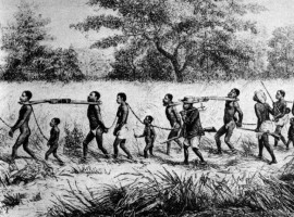 An African dealer marches Slaves to the coast where they will be sold.