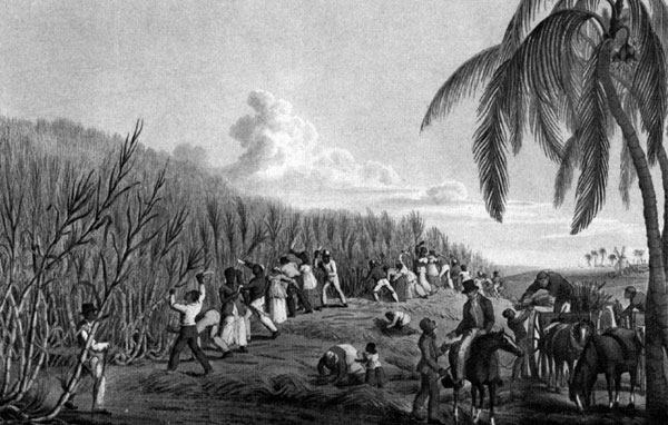 a narrative of slavery on the southern plantations in the 1600s Slavery became a passionate focal point of contention,  (for the force of two plantations was working together),  life on a southern plantation,.