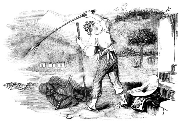 The flogging of slaves in Brasil