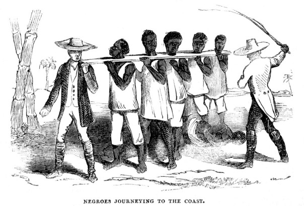 Slaves being take to the coast in a coffle