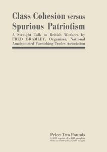 Class Cohesion versus Spurious Patriotism Front Cover